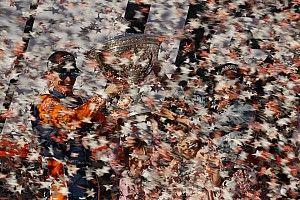В США завершился сезон IndyCar. Вот его главные итоги