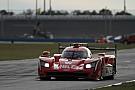 IMSA Cadillac reste devant, Alonso en mode qualifs