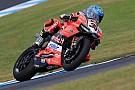 Superbike-WM Marco Melandri jubelt über Sieg in