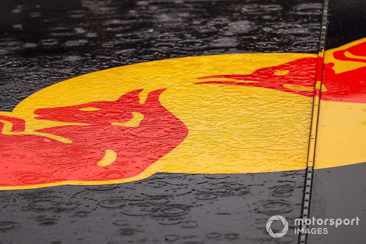 Red Bull, Formula E ile ilgilenmiyor