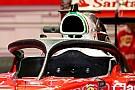 Entscheidung am Donnerstag: Formel 1 2017 mit oder ohne Halo