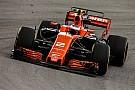 Formel 1 Stoffel Vandoorne zieht Bilanz: Kann das Team endlich richtig lenken