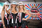Галерея: дівчата гоночного вікенду на будь-який смак