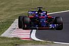 Gesprekken tussen Toro Rosso en Honda over motor voor 2018 stukgelopen