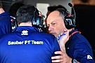 Sauber: Haas-Modell wäre