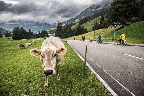Vidéo, Motorsport.com Suisse au Red Bull Alpenbrevet 2018