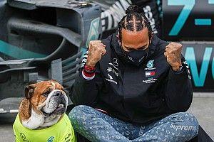 Hamilton casi pierde el control de sus emociones en el final