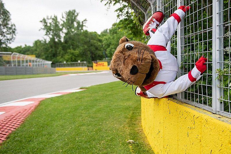 Grosjean atropella a una marmota durante la práctica