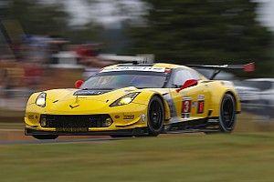 Corvette Racing conferma tutti i suoi piloti anche per l'IMSA 2018