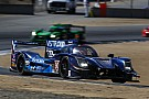 IMSA A Laguna Seca vince il team team Spirit of Daytona grazie a van der Zande
