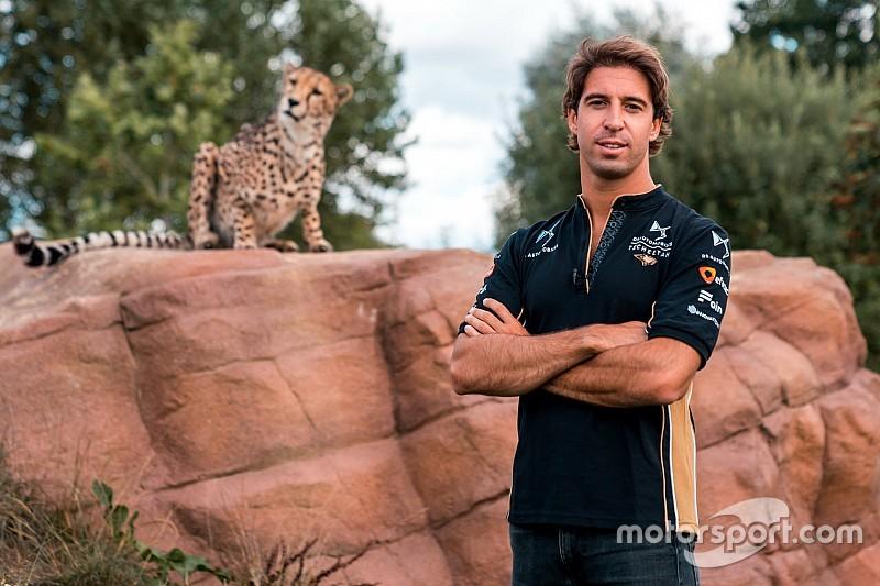 Felix da Costa blijft in Formule E met overstap naar Techeetah