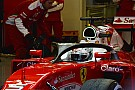 Ferrari продолжает испытания системы Halo