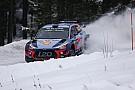 WRC Neuville se lleva el Rally de Suecia y el liderato del WRC