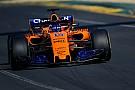 Fernando Alonso ist