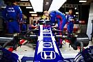 Fórmula 1 Toro Rosso quiere tener un piloto japonés en el equipo