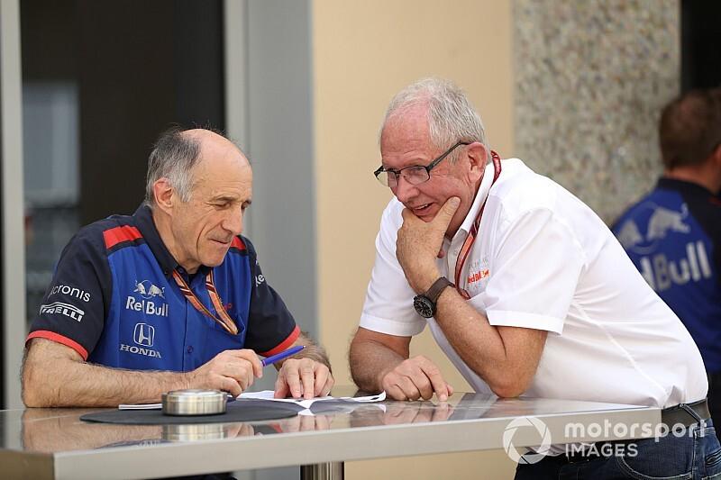 Tost stellt klar: Toro Rosso auch nächstes Jahr Honda-Versuchskaninchen