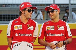 Massa sceptycznie o powrocie Alonso