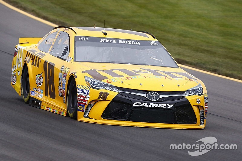Busch brothers top final Sprint Cup practice at Pocono