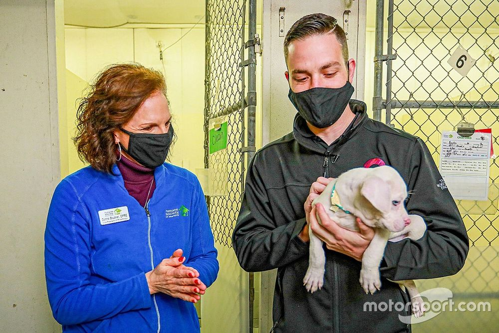 Ally joins Alex Bowman in race to help animal rescues