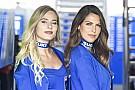 MotoGP Fotogallery: ecco le grid girl del GP di Francia di MotoGP