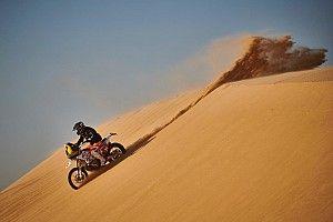 Jarmuż zachwycony Rajdem Dakar