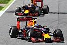Red Bull задействует на тестах Ферстаппена и Риккардо
