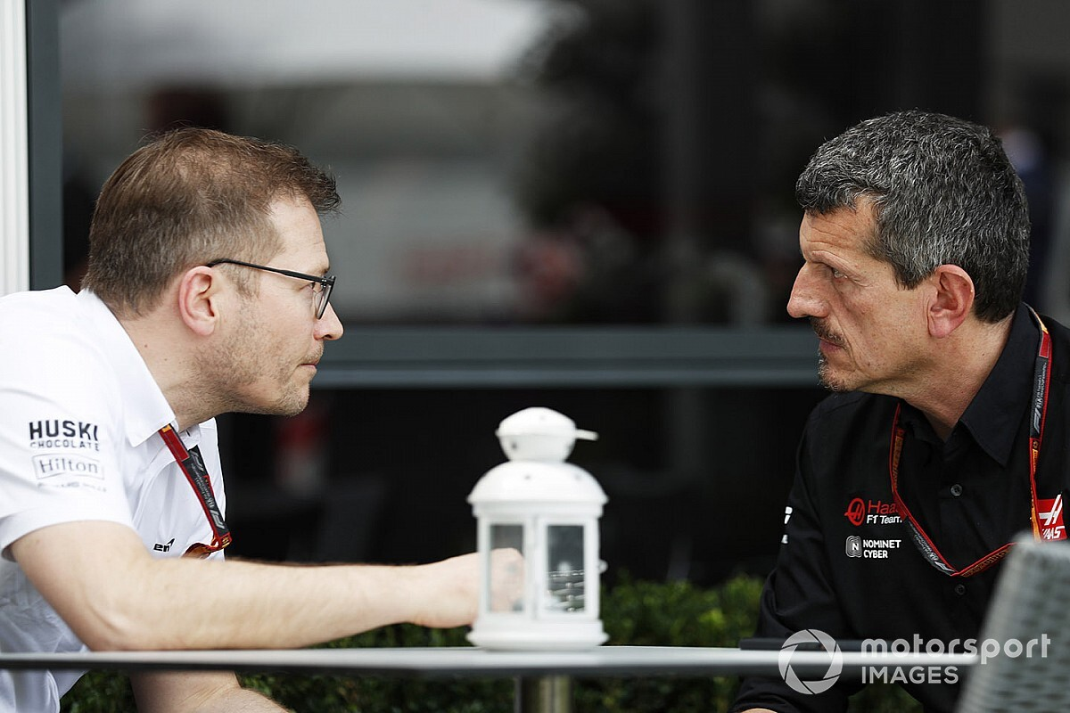 "Steiner: Team disagreement on cancellation ""normal"""