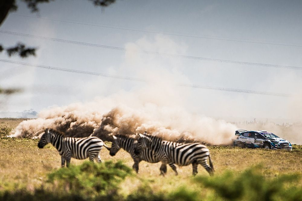 Gravel Notes Podcast: How M-Sport conquered the Safari from afar