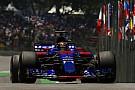 Hartley, 2018'de Toro Rosso koltuğunda olmayabilir