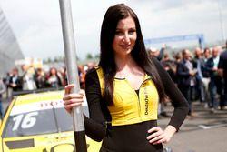 Chica de la parrilla para Timo Glock, BMW Team RMG, BMW M4 DTM