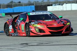 #93 Michael Shank Racing Acura NSX