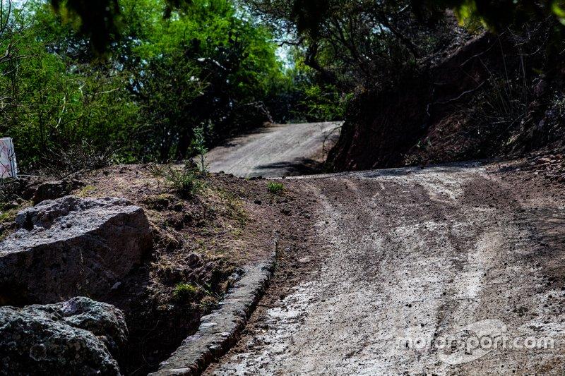 Ралли Мексики: атмосфера