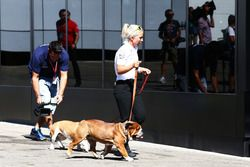 Roscoe y Coco las mascotas de Lewis Hamilton, Mercedes AMG F1
