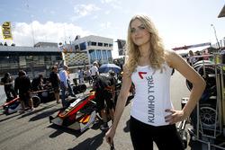 Chica de la parrilla, Callum Ilott, Van Amersfoort Racing Dallara F312 - Mercedes