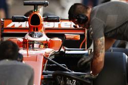 Stoffel Vandoorne, McLaren, dans le cockpit de sa McLaren MCL32