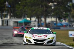 #44 Magnus with Archangel Acura NSX GT3, GTD: John Potter, Spencer Pumpelly, Andy Lally