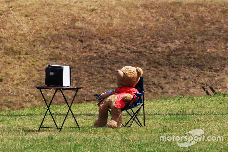 Мишка смотрит телевизор картинки