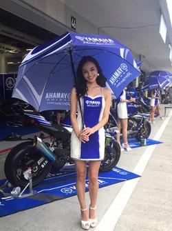 Yamaha grid kızları