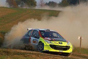 Roman Schwedt, Peugeot 207 S2000