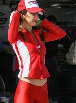 Chicas del Paddock Argentina Sistema Free