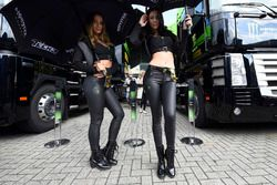 Hermosas chicas de Monster Energy