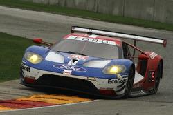 #66 Chip Ganassi Racing Ford GT: Дірк Мюллер, Джоі Хенд