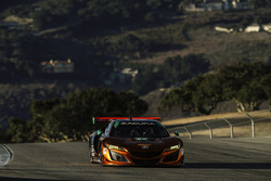 #86 Michael Shank Racing Acura NSX: Oswaldo Negri Jr., Jeff Segal