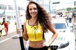 Chica de la parrilla para Pascal Wehrlein, Mercedes-AMG Team HWA