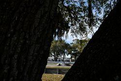 #93 Michael Shank Racing, Acura NSX: Andy Lally, Katherine Legge, Mark Wilkins