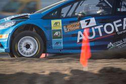 Andrea Dalmazzini, Ford Fiesta R5