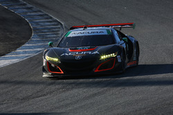 #93 Michael Shank Racing Acura NSX: Andy Lally, Katherine Legge
