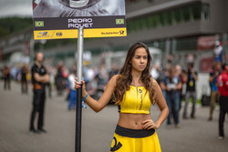 Grid girl of Pedro Piquet, Van Amersfoort Racing Dallara F317 - Mercedes-Benz