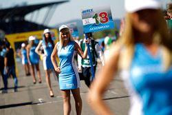 Chica de la parrilla de Tiago Monteiro, Honda Racing Team JAS, Honda Civic WTCC