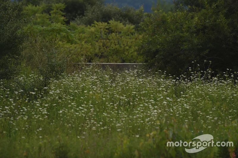 Die Außenmauer der Gegengerade des stillgelegten Nazareth Speedway